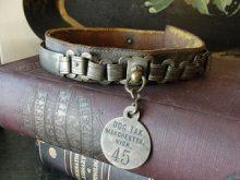 Antique Dog Collar - courtesy of Flikr.com